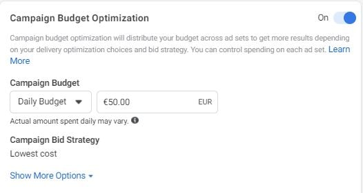 Campaign Budget Optimization in Sales-based Facebook Ads Campaigns